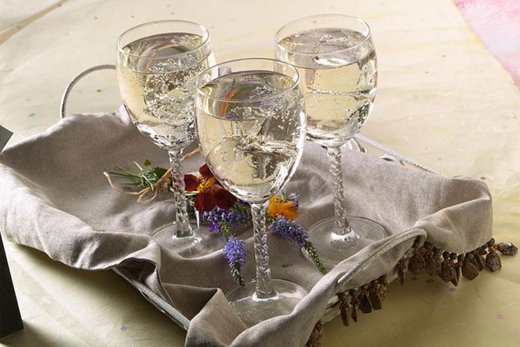 White Cranberry Wine Spritzer